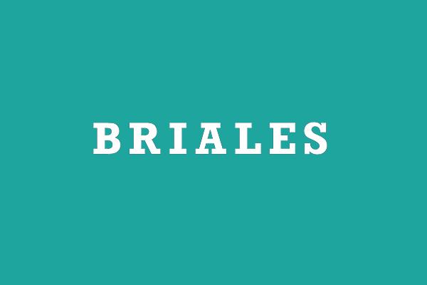 POLITICA DE LA CALIDAD | Briales SA